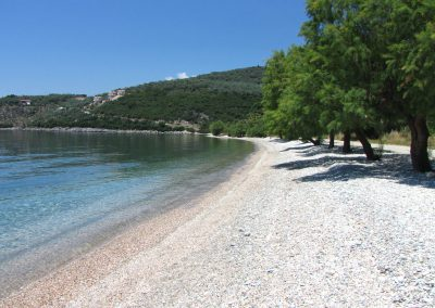 Razi beach sea and trees
